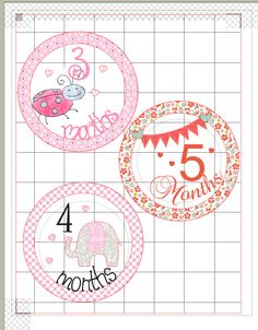 DIY Monthly Onesie Stickers with your Silhouette and Print  Cut - Create and Babble - what a sweet baby shower gift idea!