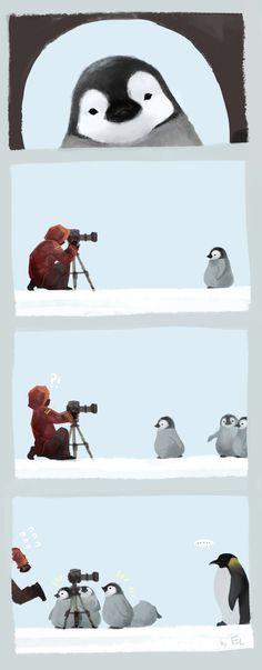 """""""penguin attack""""   mushstone on deviantART"""