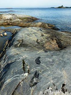 Swim in Sweden's biggest lake, Vänern   Lidköping, Sweden