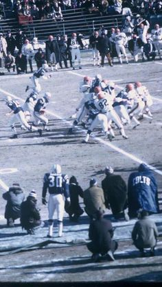 Dem COLTS...and Or..re..oles! Baltimore Colts, Baltimore Maryland, Indianapolis Colts, Sport Football, Geography, Grass, Legends, Memories, Fan