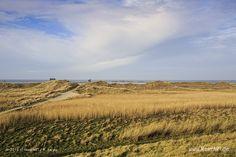 Dünenlandschaft im Winter 2014 an der Nordsee am Strand von St. Peter-Ording