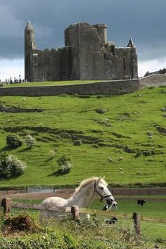 Rock of Cashel Co.Tipperary