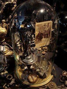 #cabinet of curiosities, #oddities, #bones collector