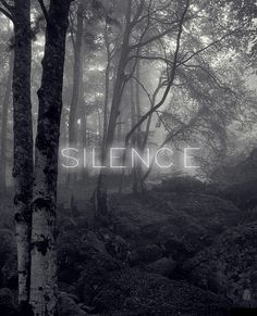 I would have made the silence gold.