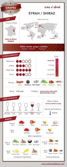 Wine&About - Grapes: Syrah/ Shiraz #infografía