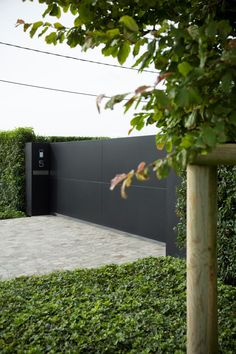 Modern garden gate with dark aluminum. Reduced planting with horizontal structures created with ivy and one specimen tree.