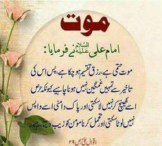 Hazrat Ali Sayings, Imam Ali Quotes, Mola Ali, Beautiful Islamic Quotes, Islamic Dua, Islamic Messages, Islam Facts, Funny Thoughts, Deep Words