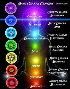 Chakra's De chakra's vormen de sleutel tot lichamelijke gezondheid, emotionele stabiliteit en de geestelijke helderheid. Het zijn geleiders die energiestromen uit de hemelen en aarde filteren, zodat die zich kunnen samenvoegen. De verandering van deze energievelden vormt een chakra. Deze draaikolk van bewegende energie stimuleert allerlei organen in het lichaam om hormonen in de bloedbanen te brengen. De invloeden van deze hormonen beheersen ons lichaam. Ze beïnvloeden ook ons geestelijke…