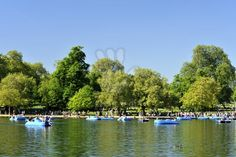 Pedal boating in Hyde Park