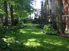 Urban Residential Sideyard