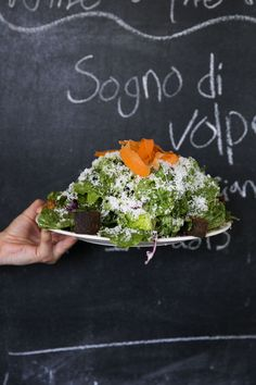 Recipe: Jersey Salad — Salad Recipes
