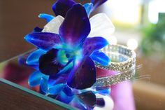 ivory rose and blue orchid corsage | Mandala Floral | Calgary wedding and event florist