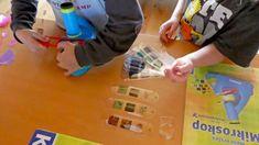 Kinder forschen die natur unter dem mikroskop kosmos verlag