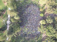 Autumn 2011 ~ UC Davis strike... I was there