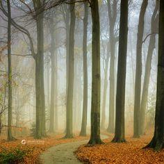 The Winding Path by LarsVanDeGoor.deviantart.com on @deviantART