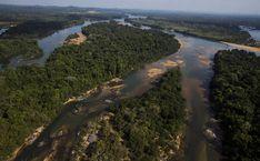 Delfim Netto recebeu propina por Belo Monte, diz executivo da Andrade - 07/04/2016 - Poder - Folha de S.Paulo