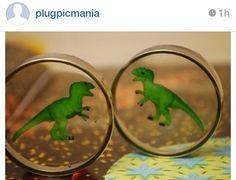 T-Rex plugs. Gauges.