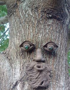Druids Trees:  Create your own tree spirit.