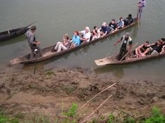 chitwan national park nepal   Description Chitwan National Park (2010)-44.jpg