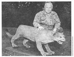 Bruce Wright, a New Brunswick-based wildlife biologist and author, with what is thought to be the last eastern puma. The puma was trapped by in Somerset County, Maine in 1938.