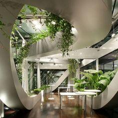 Undulating Indoor Garden