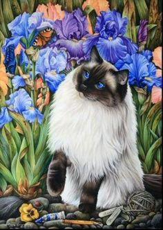 345 best quotcat artdrawingsquot images on pinterest cat art