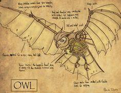 emerald steam owl-unknown artist