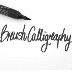 Matteo tosi brush calligraphy