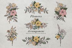 Botanical Illustration Black And White, Transparent Design, Romantic Flowers, Vintage Flowers, Line Art, Wild Flowers, Hand Drawn, Flower Arrangements, Clipart Vintage