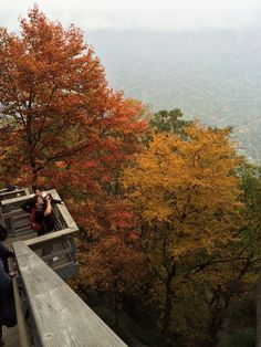 Chimney Rock at Chimney Rock State Park in the fall! Love that color.