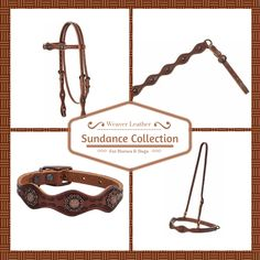 The Weaver Leather Sundance Collection is crafted in brown skirting leather and features antiqued copper berry conchos and hand tooling for a distinctive Western appeal. Shown here in the dog collar, browband headstall, breast collar and noseband.