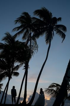 bride and groom under the palm trees at sunset - Destination wedding on Little Corn Island, an incredible tiny Caribbean island off the coast of Nicaragua - at Yemaya Island Hideaway Resort & Spa