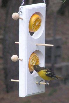Double Fruit / Suet Feeder-Orioles-Grosbeaks-Sapsuckers-Catbirds - This all-cedar bird feeder allows you to feed sebum (in winter) or fruit (in summer) to the birds. Wooden Bird Feeders, Bird House Feeder, Diy Bird Feeder, Oriole Bird Feeders, Homemade Bird Feeders, Bird House Kits, Bird Houses Diy, Dog Houses, Homemade Bird Houses