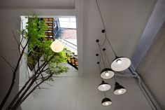 The interior of Vietnam's Vegan House is comprised of donated and found furniture.