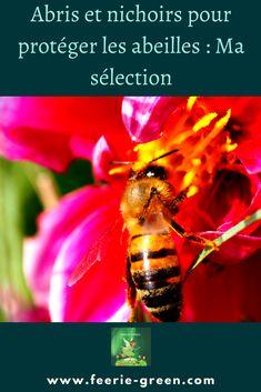 🥰Je vous présente aujourd'hui ma sélection d' abris et nichoirs pour protéger les abeilles 🥰 ( insectes ) Permaculture, Vie Simple, Green Lifestyle, France, Blogging, I Will Protect You, Bees, Insects, Natural Living