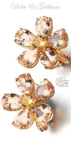 Brilliant Luxury by Emmy DE ♢Dolce   Gabbana Earrings Dolce   Gabbana 7d90a141e62