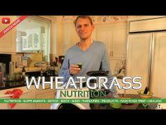 NUTRITION from LIVET.tv