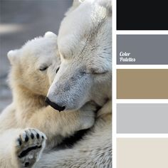 Soft pastel palette, based on a combination of coffee, milk and pale-blue tones balanced with white and black colors. In the interior design it suits spaci.