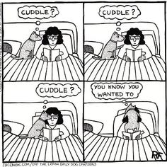 This is so my dog lol