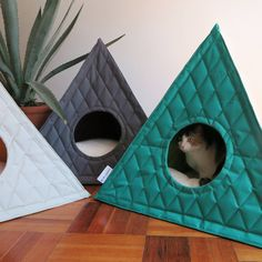 Posted by ryoungko Bartholomeow Frida attractive cat teepee Study Additional. Diy Cat Tent, Cat Teepee, Raising Kittens, Cats And Kittens, Ragdoll Kittens, Funny Kittens, Tabby Cats, Bengal Cats, White Kittens