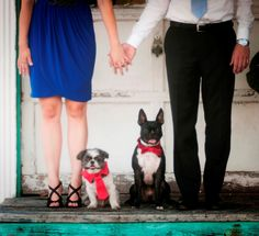 Engagement photo with dogs @Faller Photography  Didnt know which category to put, thought this was a neat pic!