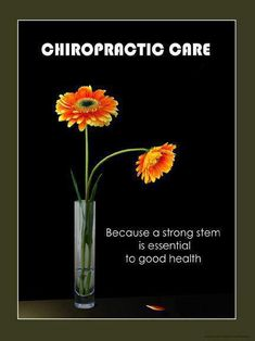 #chiropractic ✤ Raya Clinic- Chiropractic, Nutrition, Acupuncture, Spinal Decompression and more 860.621.2225