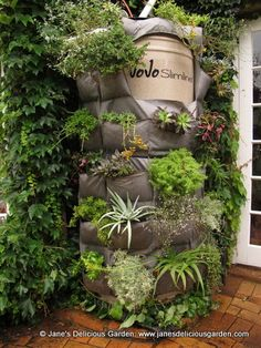 Jane's Delicious Garden - JoJo Wrap Vertical Garden