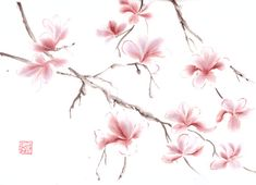 Watercolor Original Painting of Pink Magnolia by 3katdesign, $170.00