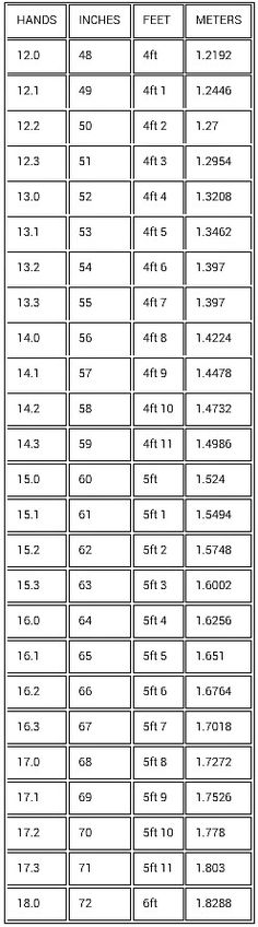 feet inches conversion chart learning pinterest charts. Black Bedroom Furniture Sets. Home Design Ideas