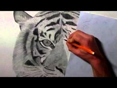 Pencil Drawings by JD Hillberry - Realistic Drawing Techniques - YouTube