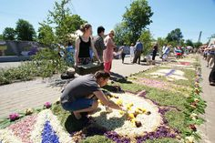 Famous flower carpets during Corpus Christi in Spycimierz, Uniejów commune…