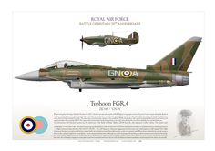 ROYAL AIR FORCE Battle of Britain 75th Anniversary Wing Commander Eric James Brindley Nicolson VC DFC tribute