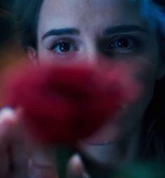 Filme em live action chega aos cinemas em 2017