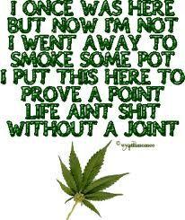 Buy Marijuana Online I Buy Weed online I Buy Cannabis online I Edibles Weed Memes, Weed Humor, Marijuana Art, Medical Marijuana, Cannabis Oil, Marijuana Funny, Bongs, Stoner Quotes, Smoking Weed